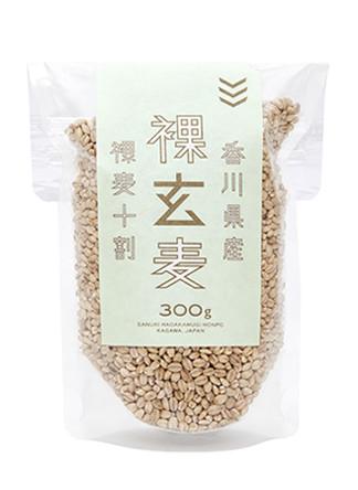 item-genbaku300-thum